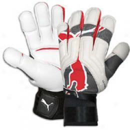 Puma V1.08 Rc Gk Glove