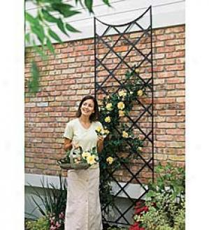 9' Wrought-iron Garden Trellis