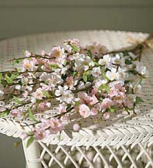Blossom Stems, Set Of Four