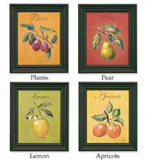 Framed Fruit Prints, Set Of 4