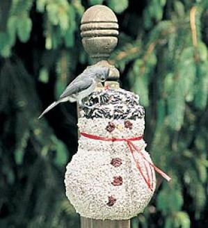 Gift-wrapped Birdseed Snowman