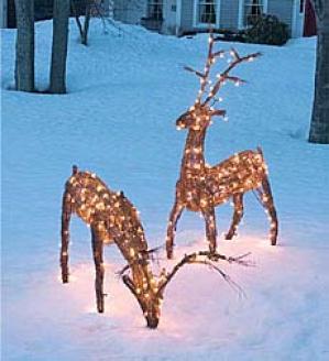 Grapevine Deer