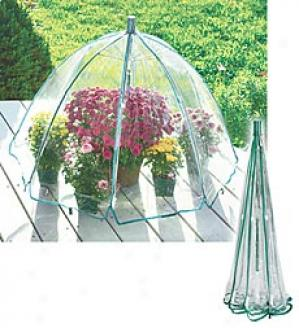 Greenhouse Umbrella