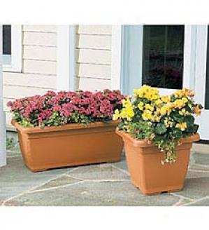 Planter Casters, Set Of 4