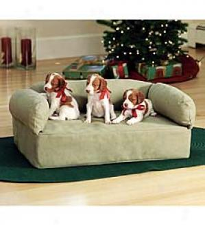 Small Pet Couch  Fawn Solely