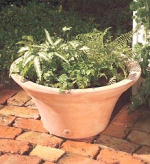 Small Terra Cotta Planter