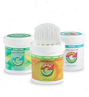 Smells Begone' Scented Oder Absorber - Citrus