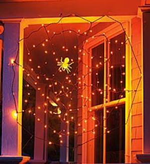 Spider Web Lights With Glow Spider