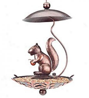 Squirrel Birdfeeder
