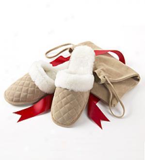 Journeying Slippers