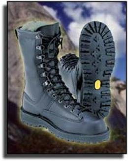 Danner® Fort Lewis® 10'' Safety Toe Insulated Boots Waterproof Gore-tex® Fabric Bootie